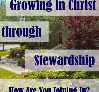stewardship-2014-thumbnail-400x400